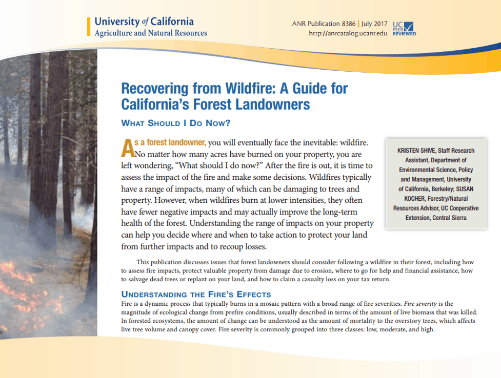 Screenshot of first page of California Forest Landowners Recovery Guide, one of the resources designed to help communities recover after wildfire covered in this post