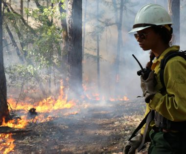 Good Fire on the Ground in 2017: Seven Controlled Burns to Learn From