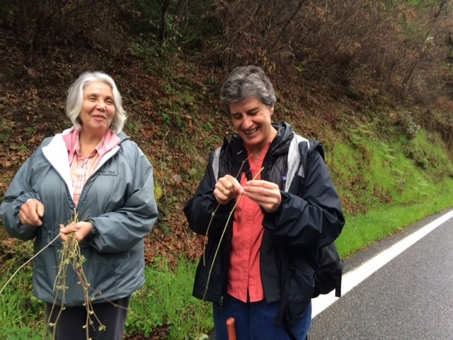 Lynn inspecting hazel sticks with Deborah while walking on a road