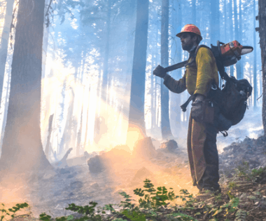 Wildfire Funding in the Omnibus Bill: What You Need to Know