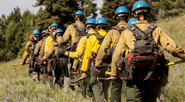 Firefighters heading into the forest