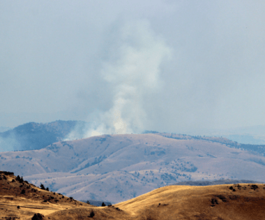 Fire Adapted Communities on the Range: Why Rangeland Fire Protection Associations Matter