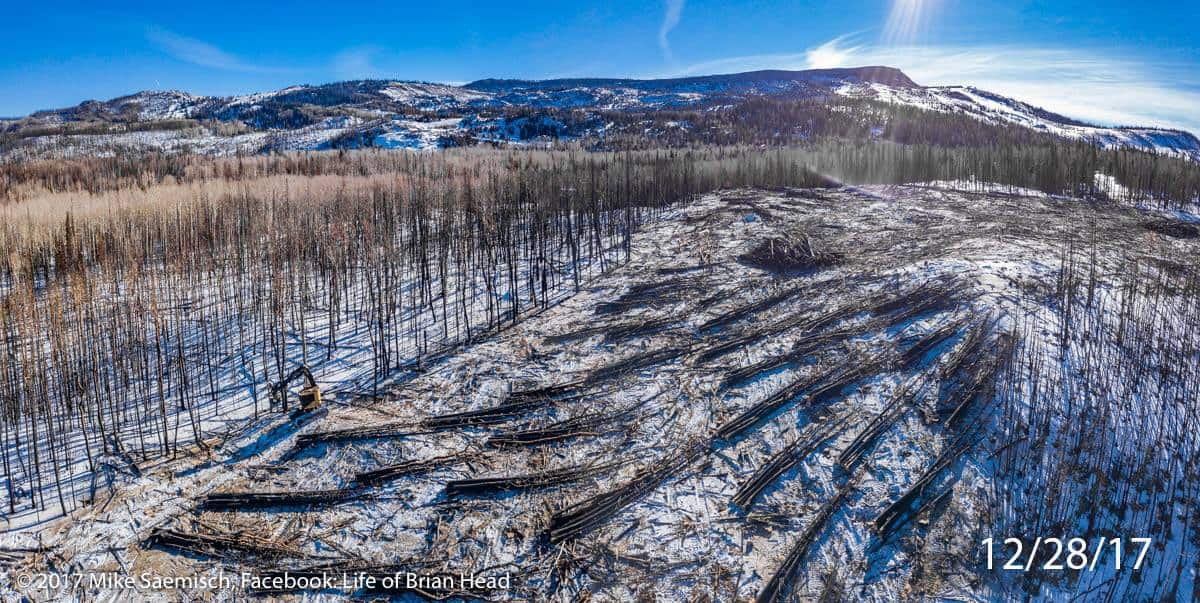 A feller buncher harvesting and piling burned trees in a snowy landscape