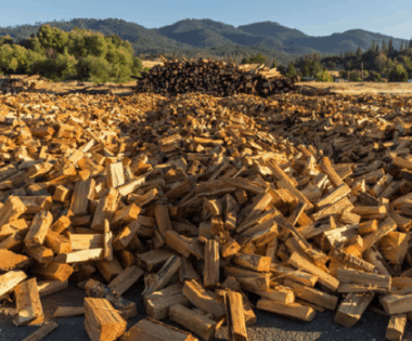 Fantastic Failure: Biomass Utilization and Surviving the Pursuit of a Bright Idea