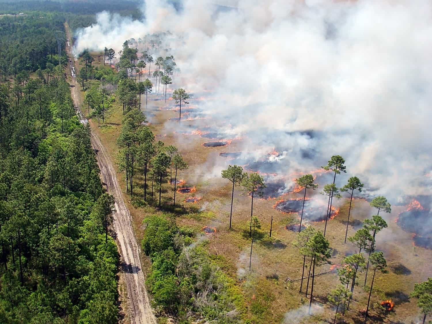 Aerial view of prescribed fire and smoke. Prescribed fire liability varies by state.