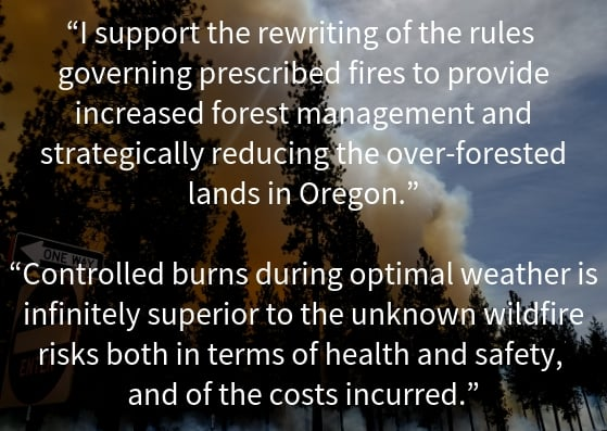"An image of smoke with two of the public comment made in response to Oregon's draft smoke management plan: ""I support the rewriting of the rules governing prescribed fires to provide increased forest management and strategically reducing the over-forested lands in Oregon."" ""Controlled burns during optimal weather is infinitely superior to the unknown wildfire risks both in terms of health and safety, and of the costs incurred."""