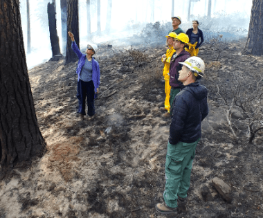 How Do You Want Your Smoke? Why Oregon Is Exploring a New Smoke Management Plan
