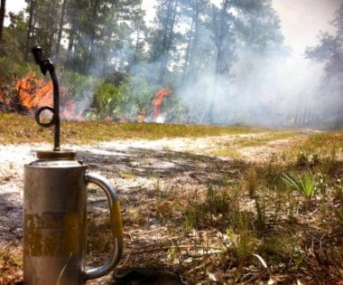 Florida, Prescribed Fire, the National Association of State Foresters, and Risk Mapping: Meet John Fish