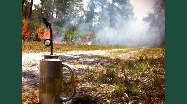 Florida Prescribed Fire The National Association Of State
