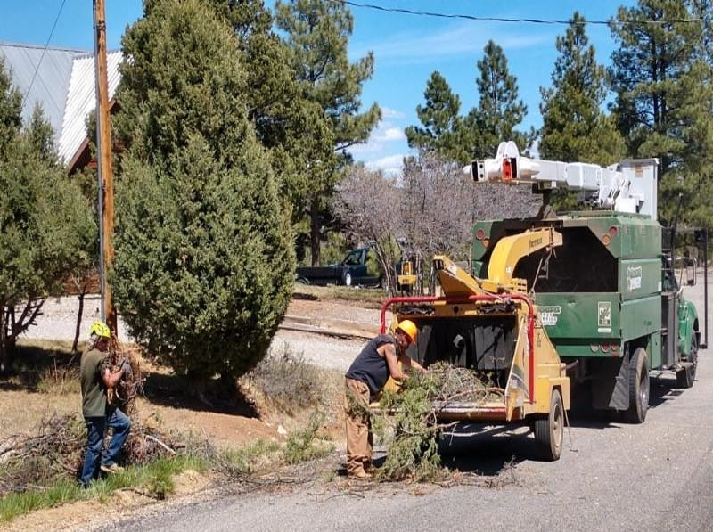 Two people loading brush into a chipper that is parked on a residential street