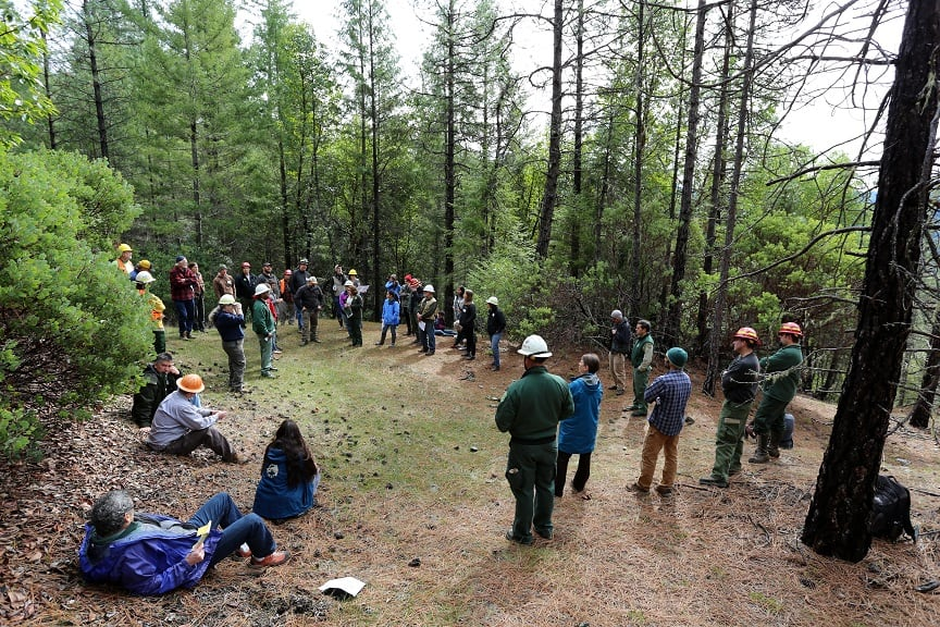 Group discussion in the forest, rebuilding trust