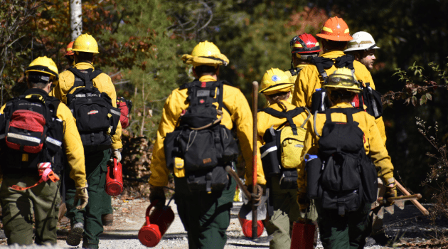 Prescribed fire practitioners head out into the field