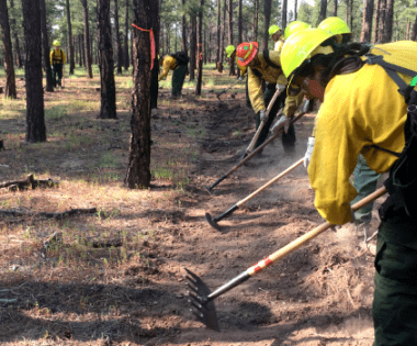 How the Forest Stewards Guild is Building the Next Generation of Fire Practitioners: The Forest Stewards Youth Corps Fire and Fuels Program