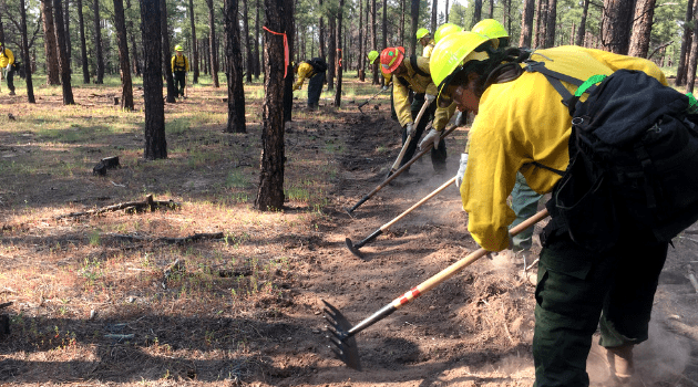 A fire crew clearing line