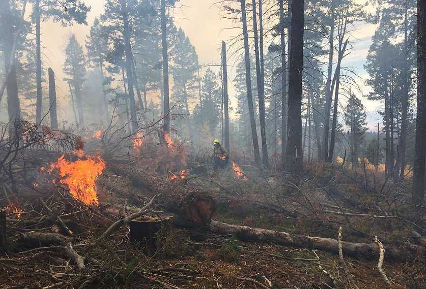 Fire practitioners monitoring burn piles