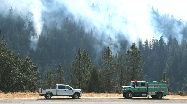 Two different agencies' fire trucks with prescribed fire smoke rising from the forest behind them