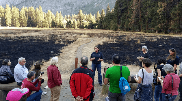 National Park Service employee speaking to a group of people who are looking at a recently burned meadow