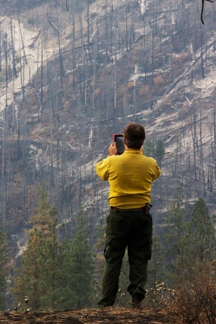 Crew member with his back to the camera, surveying a burnt hillside with an electronic device