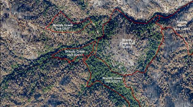 Aerial view of a portion of the Carr Fire burn area, with recent prescribed burn footprints also delineated. The units burned in 2017 appear less damaged by the Carr Fire than those treated in 2013.