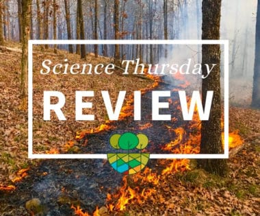 Science Thursdays: A Look Back at Thirteen of Your Favorite Stories