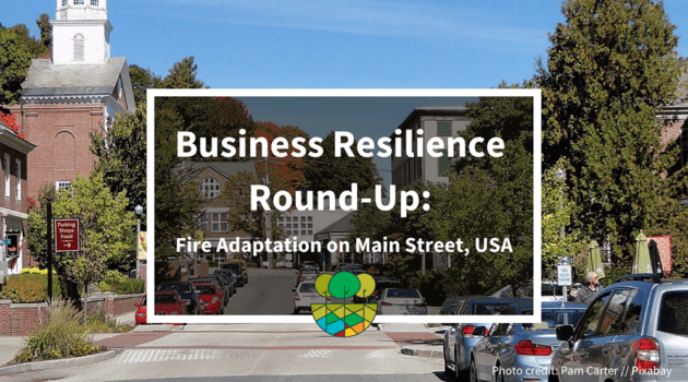 Business Resilience: Fire Adaption on Main Street USA