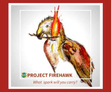 Project Firehawk: Risk, Ripeness, and the Case for Paper Bags