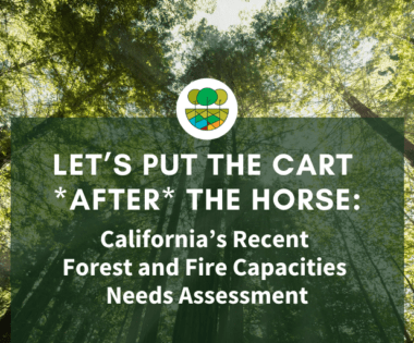 Let's Put the Cart *After* the Horse: California's Forest and Fire Capacities Needs Assessment
