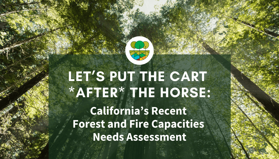 California Forest and Fire Capacities Needs Assessment