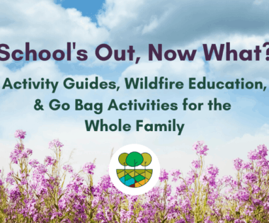 """School's Out, Now What?"" Activity Guides, Wildfire Education, & Go Bag Activities for the Whole Family"