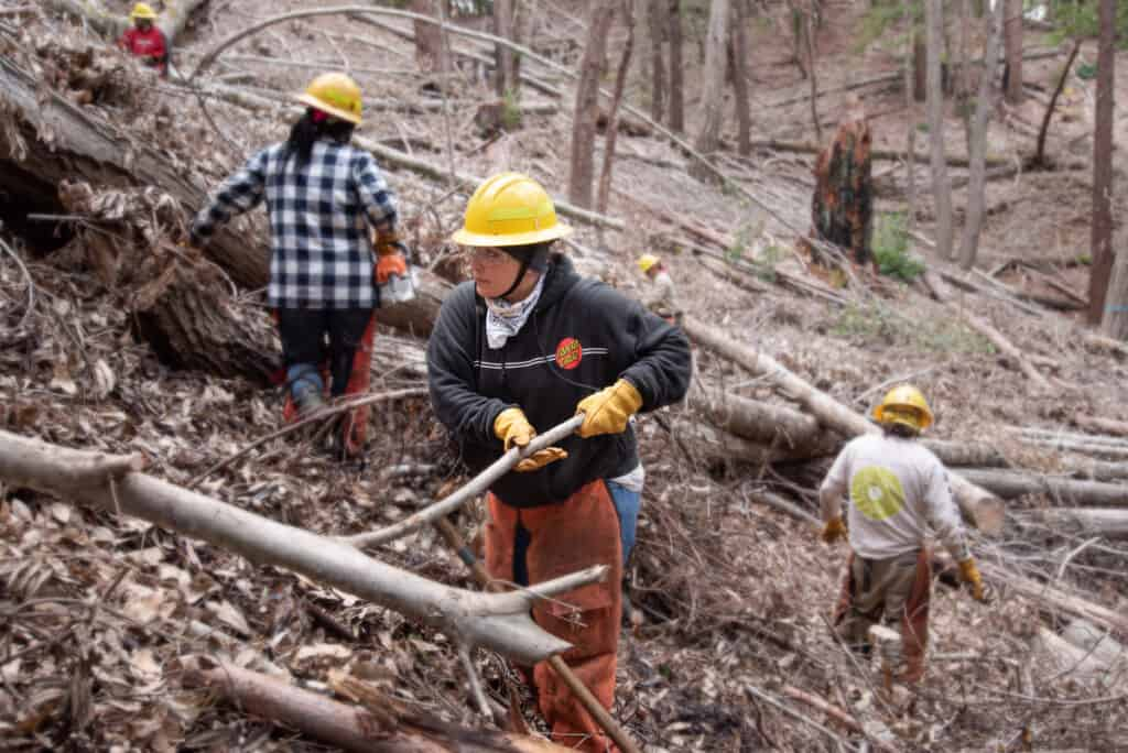 AMLT members build burn piles in the forest