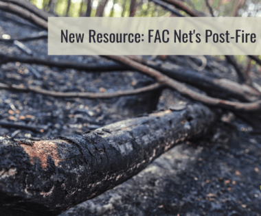 New Resource: FAC Net's Post-Fire Graphic & Facilitators Guide