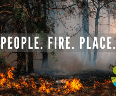 People. Fire. Place.