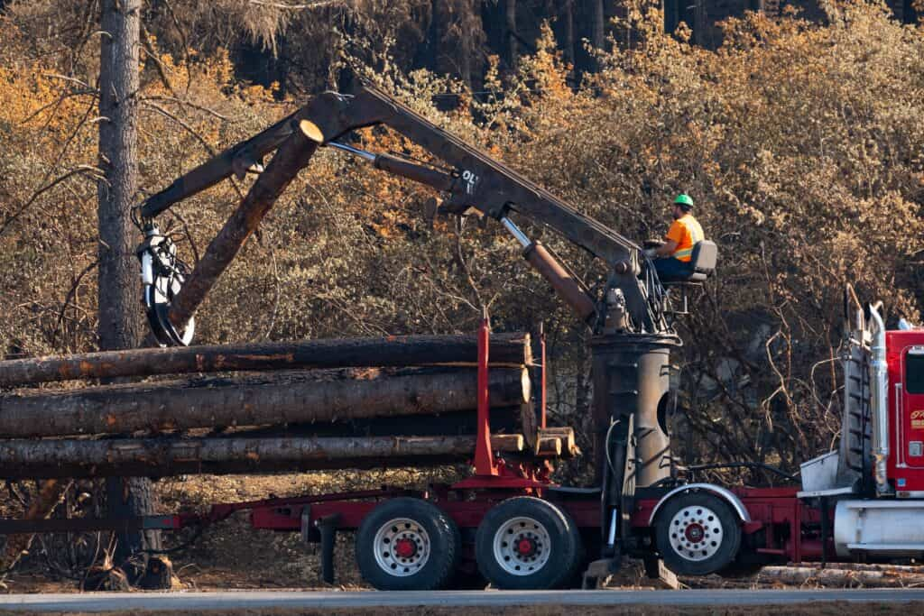 Man operates logging truck to pick up fallen and damaged trees