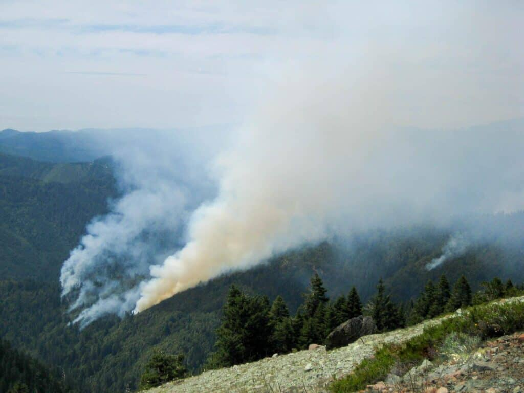 Smoke billows up from the forest during a wildfire in 2008.