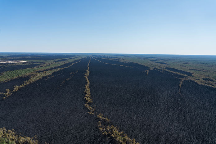 An aerial image of burned forest in New Jersey