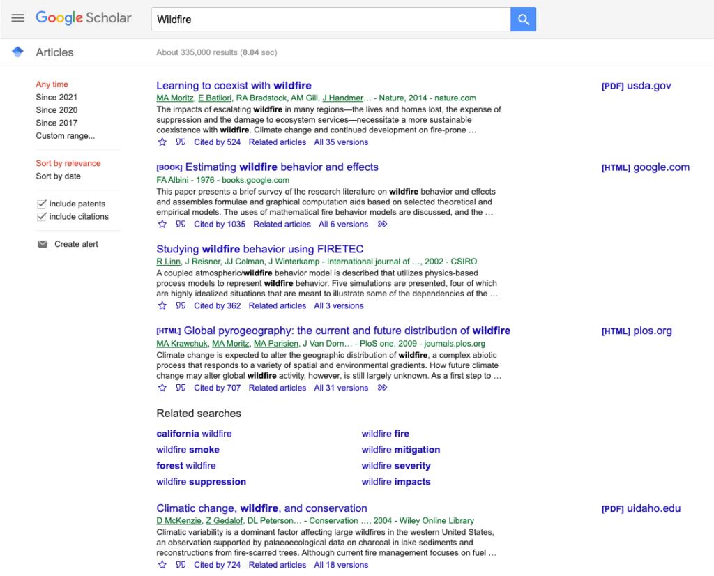 Screenshot of results on Google Scholar