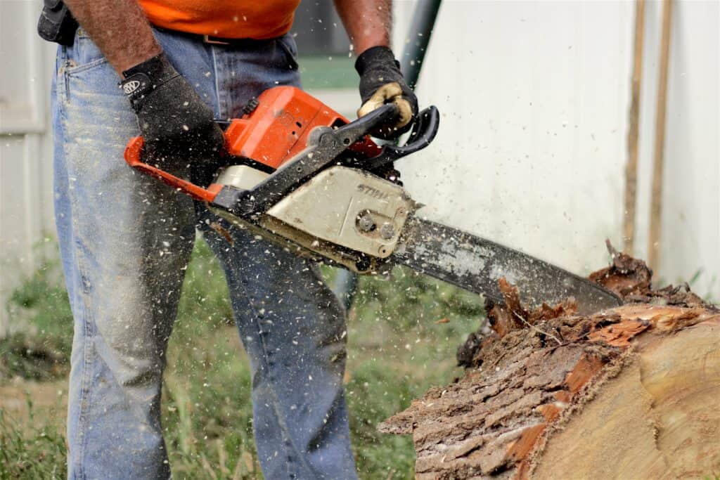 A man uses a chainsaw to cut into a fallen tree