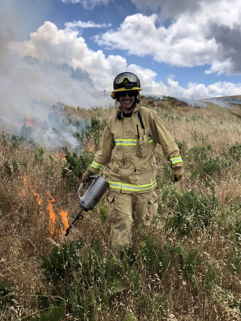 A person in firefighting equipment with a drip torch lighting a fireline