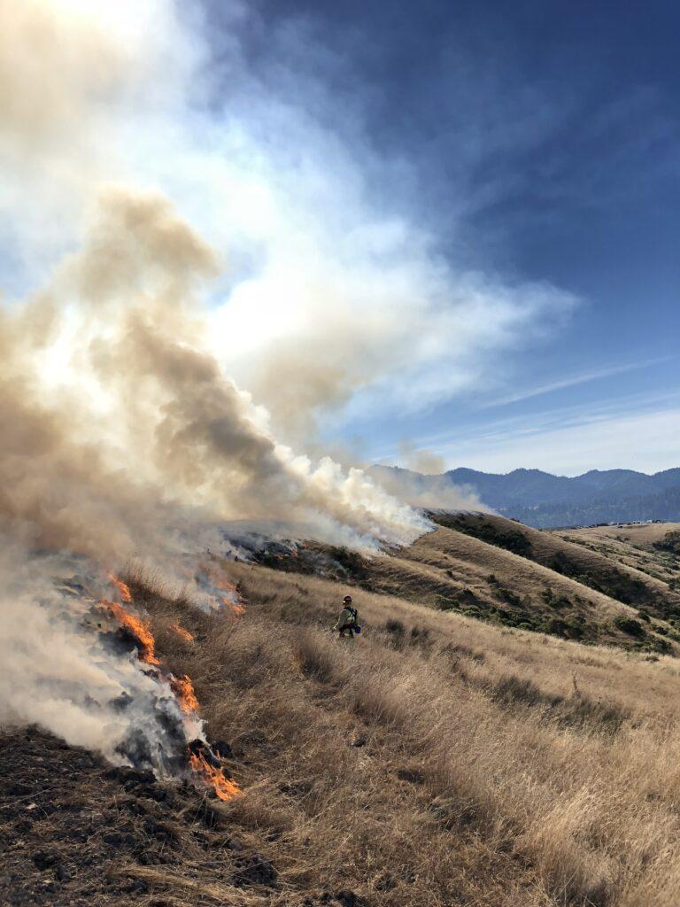 A fire smokes along the fireline