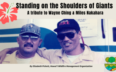 Standing on the Shoulders of Giants: A Tribute to Wayne Ching & Miles Nakahara