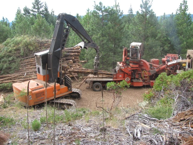 Two large forestry vehicles working in the forest