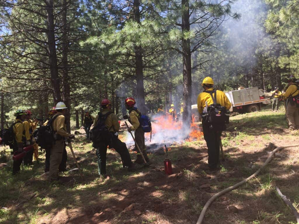 A group of prescribed burn firefighters gather around fire