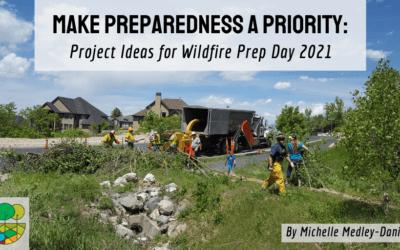 Make Preparedness a Priority: Project Ideas for Wildfire Prep Day 2021