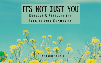 It's Not Just You: Burnout and Stress in the Practitioner Community