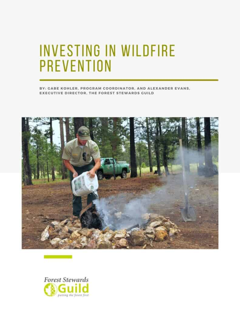 """Report cover entitled """"Investing in Wildfire Prevention"""""""
