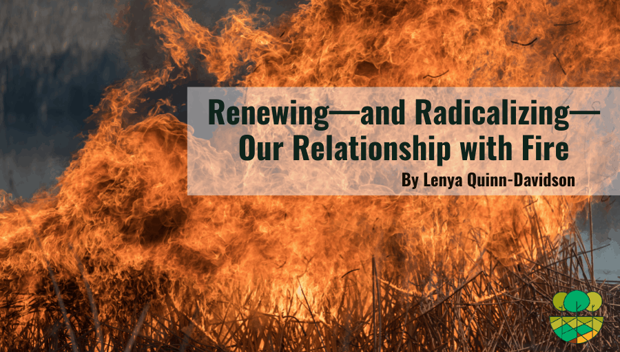 """Photo of fire blowing up from grass with title overlaid """"Renewing--And Radicalizing--Our Relationship with Fire by Lenya Quinn-Davidson"""""""