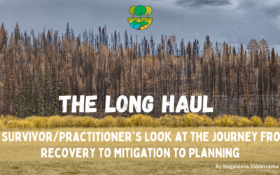 The Long Haul: A Survivor/Practitioner's Look at the Journey from Recovery to Mitigation to Planning