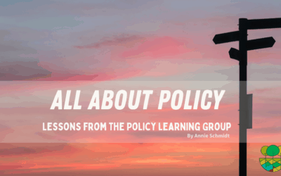 All About Policy