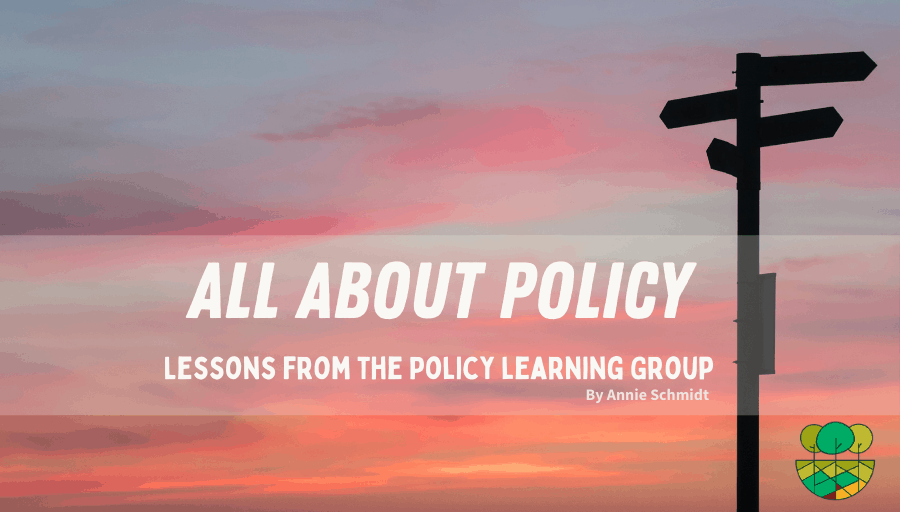 """sunset photo with sign in forground. Text overlay says """"all about policy"""""""